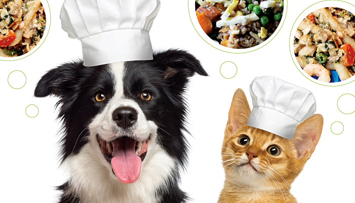 Cooking for Fluffy & Fido in the Real World