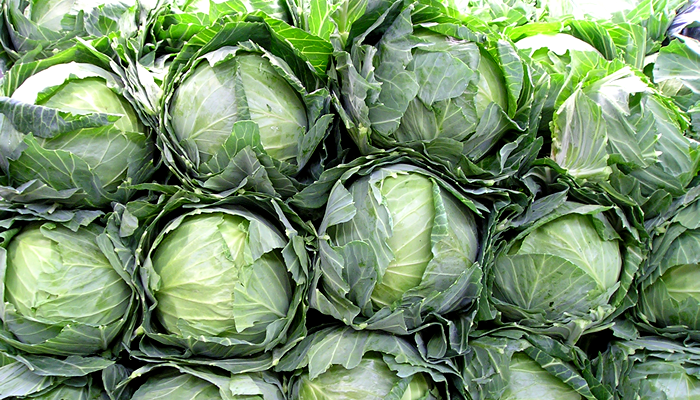 Special Ingredient Saturday – Cabbage